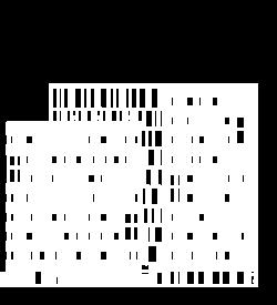 Facade-FELLOW-72dpi-Left